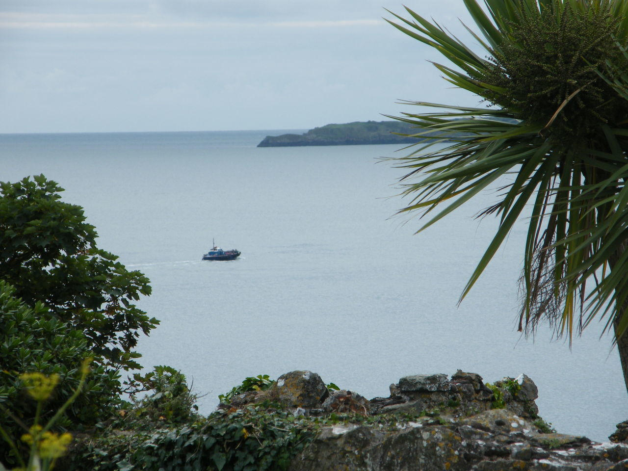 Beach Beauty In Nature Coastline Day Horizon Over Water Mode Of Transport Nature Nautical Vessel No People Outdoors Palm Tree Pembrokeshire Pembrokeshire Coast Pembrokeshire Coastal Path Scenics Sea Sky Tenby Tenby Harbour Tranquil Scene Transportation Water Yacht