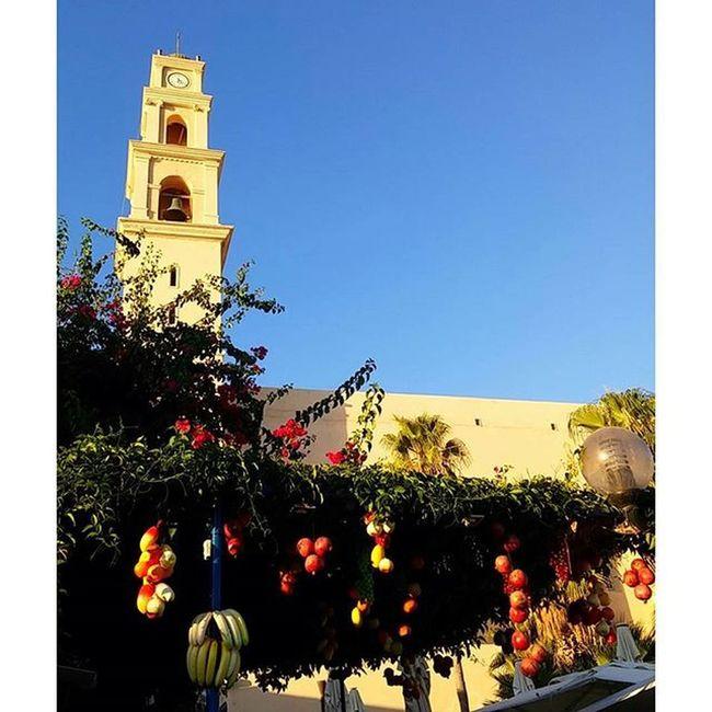 в Израиле все фрукты растут на одном дереве Instagram_israel_ Instagood Instagram_israel