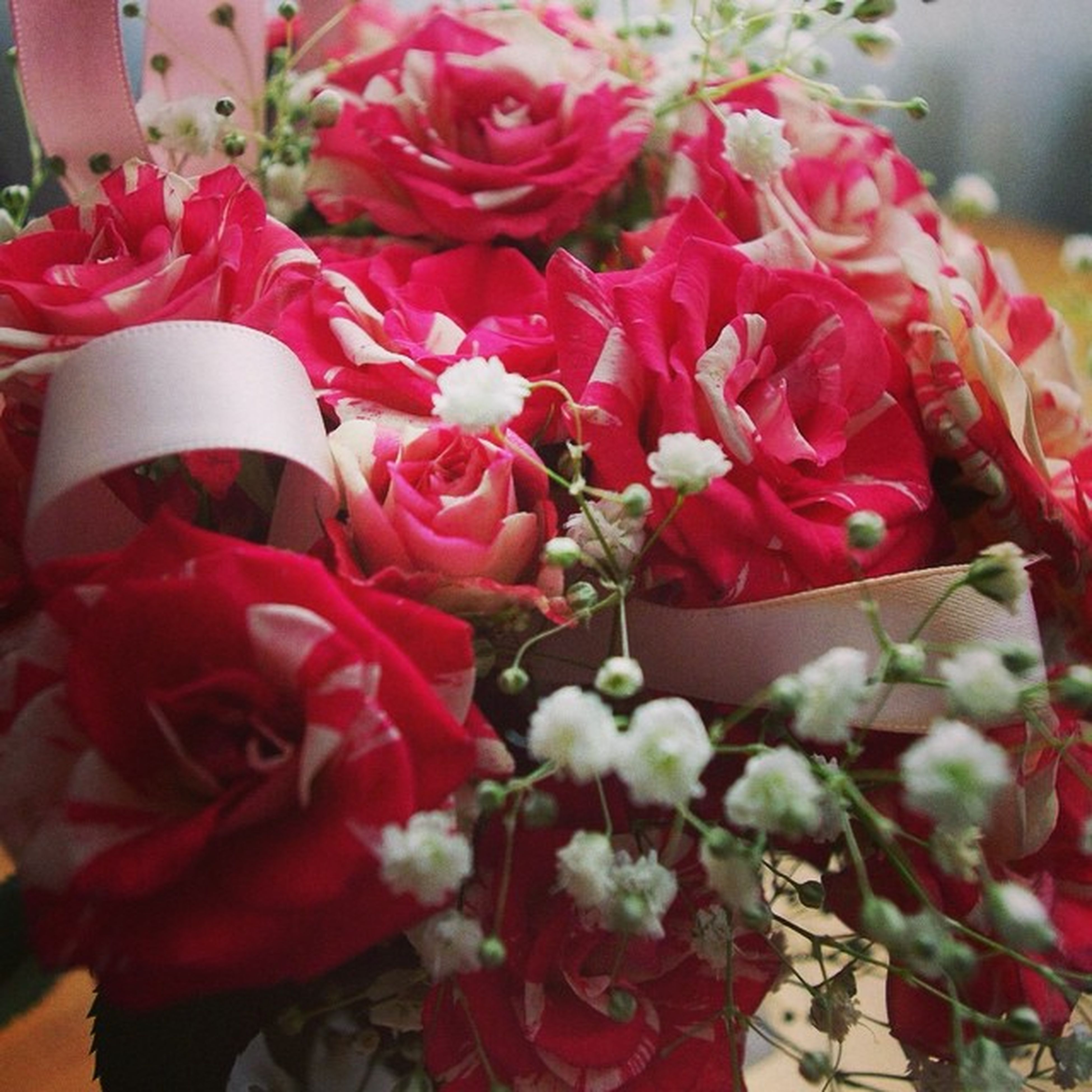 flower, petal, freshness, indoors, red, fragility, flower head, rose - flower, close-up, bouquet, pink color, beauty in nature, vase, decoration, growth, plant, nature, bunch of flowers, blooming, no people