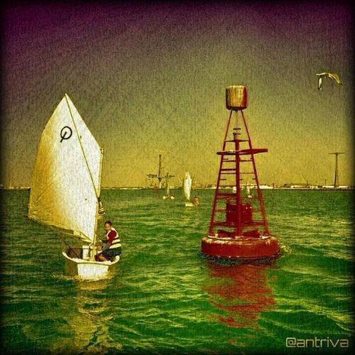 Sea Seaside Ocean Openwater Sailing Oceanside Oceanview OceanBeach Oceano Lifeinism Optimistclass Oceans Oceana Oceanlife Oceanblue OceanBreeze Oceangrove OceanGang Oceanshores Oceanwater Oceania Oceanlove Oceanic Openair Air breathing O2 nice nicemood sunny