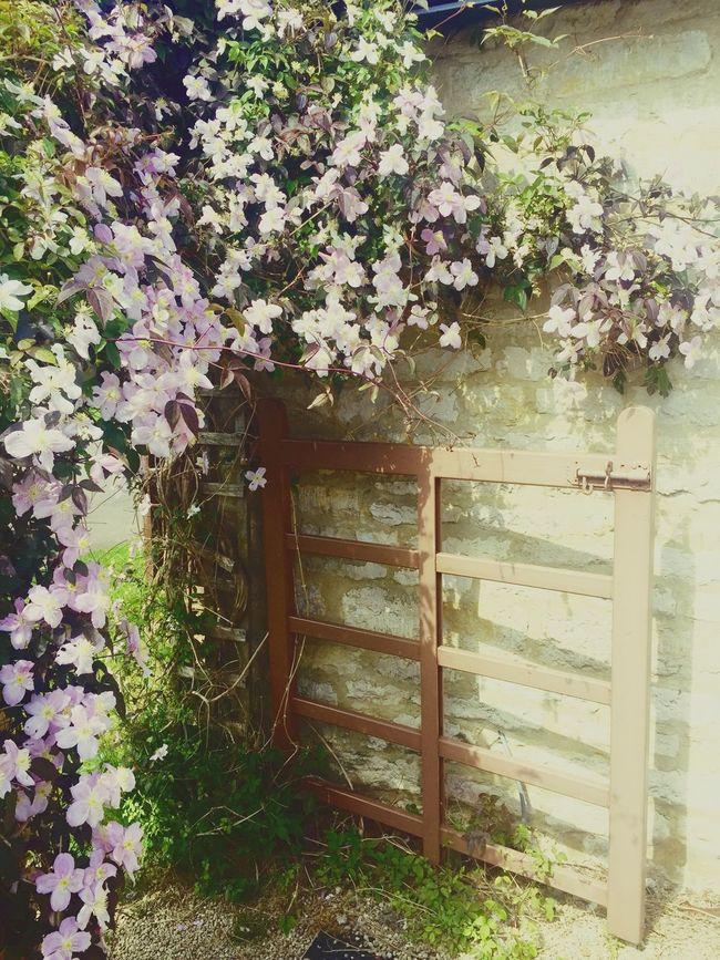 English countryside England Country English Countryside Gate Flowers Nature Nature On Your Doorstep Hidden Gems