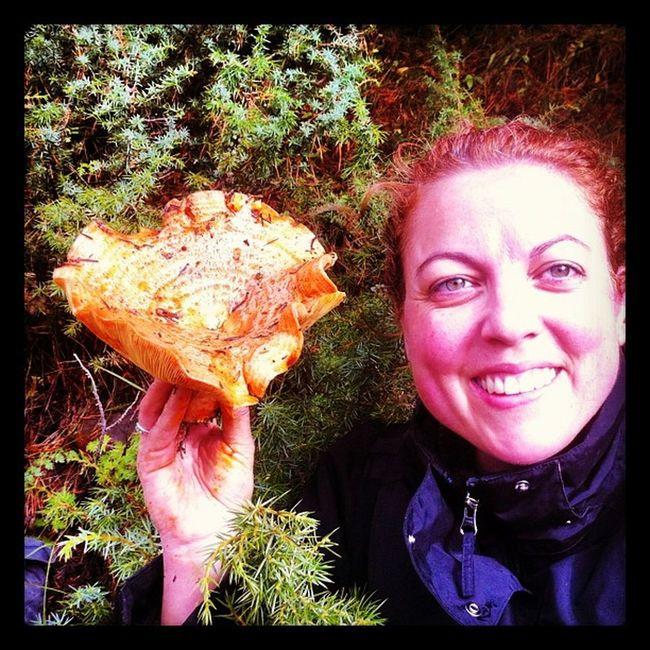 Bielsa Bolets Rovellons Niscalos setas mushroom fall tardor otoño naranja pelirrojo