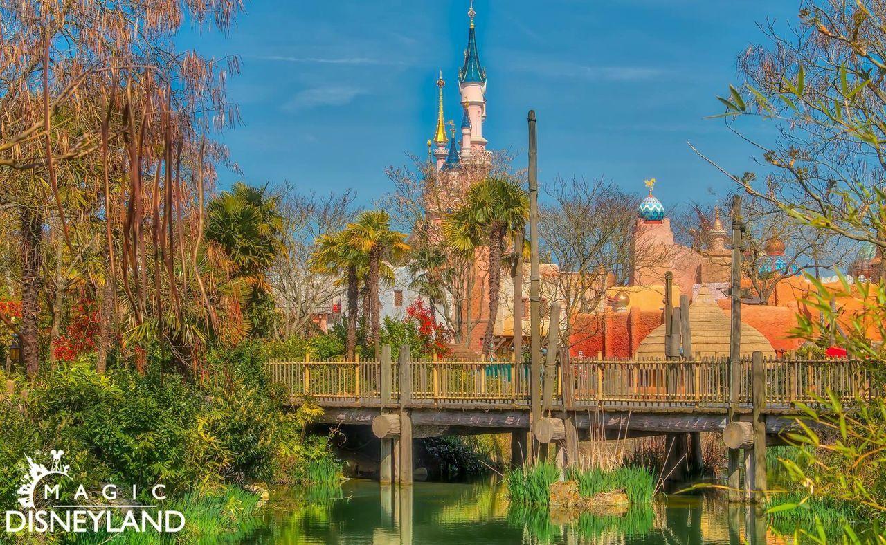Tree Building Exterior Travel Destinations Disneyland Paris Disneyland Resort Paris Beauty In Nature Disneyland Waltdisney Disney Sky Cloud - Sky Water