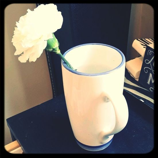 My valentine's day carnation :) Check This Out My Home Spring Taking Photos