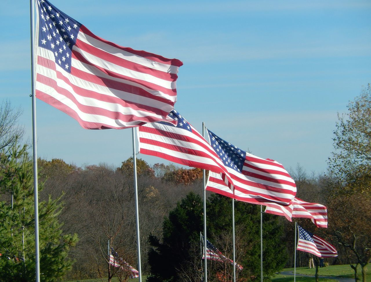 patriotism, cultures, flag, stars and stripes, striped, flag pole, no people, freedom, low angle view, tree, blue, day, outdoors, sky