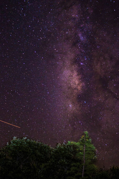 Under The Milky Way Milkyway Night Sky Everglades  Clouds And Sky Long Exposure