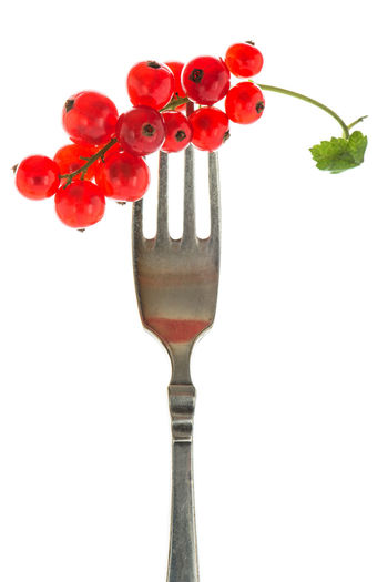 Redcurrants on a fork in backlight Backlight Backlit Close-up Cut Out Food Food And Drink Fork Freshness Fruit Healthy Eating No People Red Redcurrants Strawberry Studio Shot Sweet Food White Background White Isolated