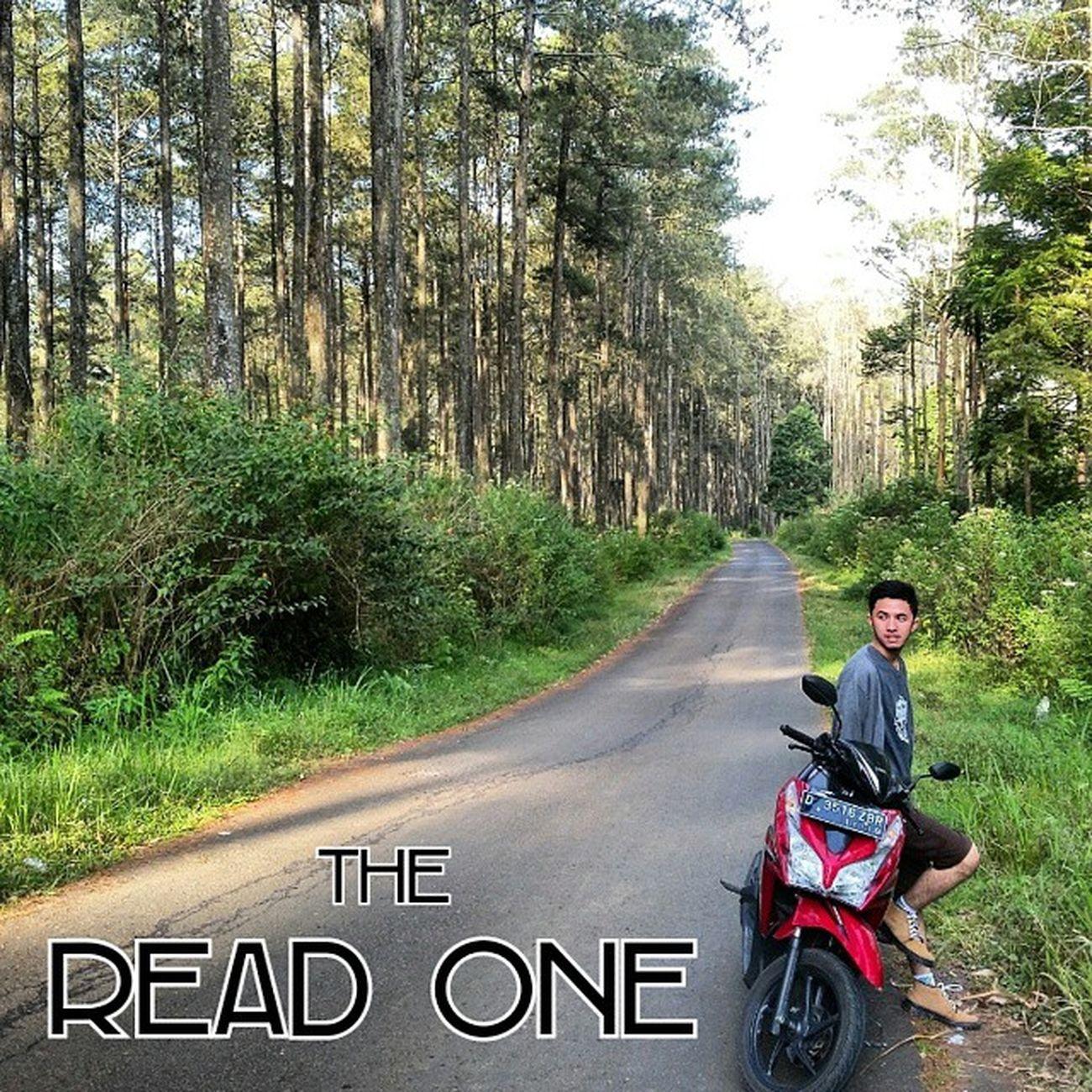 "Foto kali ini di adaptasi dari cover film TheRightOneMovie karya tangan ajaib @gandhifernando. Namanya juga ""The Read One"", jadi harus sendiri tanpa ada Tara Basro atau cewe yg menemani di fotonya.. *mepehan diri sorangan* Lokasi foto : LHI CIKOLE JAYAGIRI LEMBANG Ridwanderful JarambahBandung DiBawahLangitBandung BandungIsMe TravelingPakeReceh"