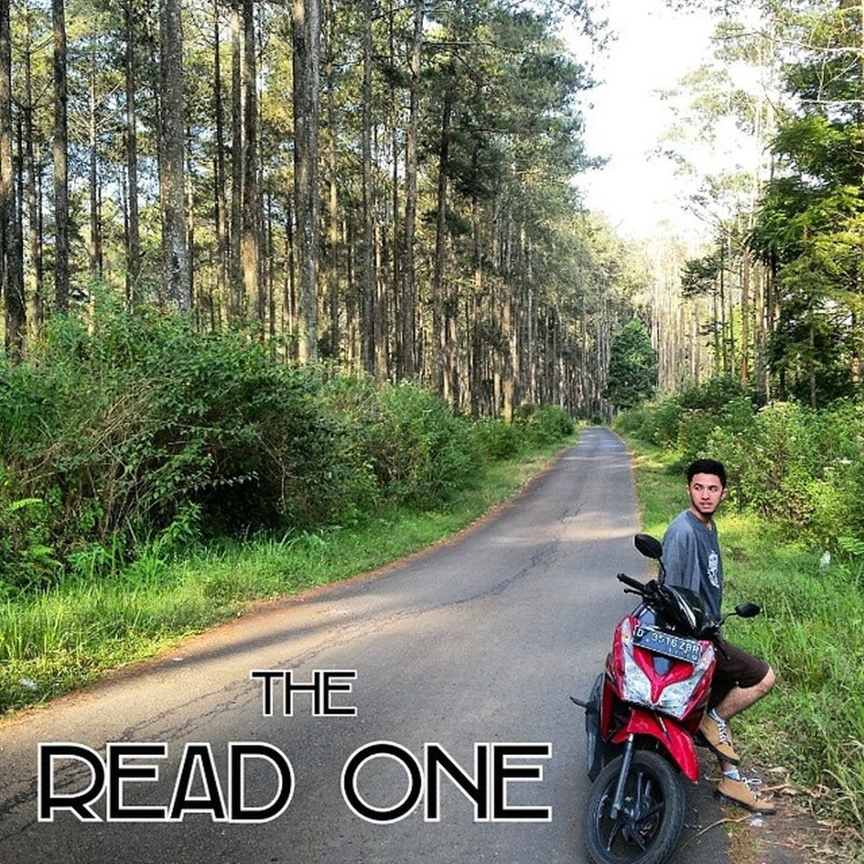 "Foto kali ini di adaptasi dari cover film TheRightOneMovie karya tangan ajaib @gandhifernando. Namanya juga ""The Read One"", jadi harus sendiri tanpa ada Tara Basro atau cewe yg menemani di fotonya.. *mepehan diri sorangan* Lokasi foto : LHI CIKOLE JAYAGIRI LEMBANG Ridwanderful JarambahBandung DiBawahLangitBandung BandungIsMe TravelingPakeReceh"