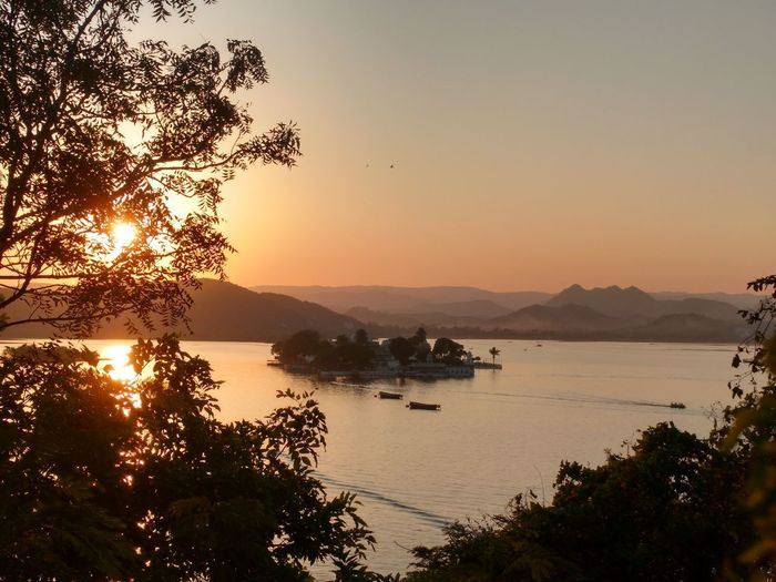 Evenings,Sunset, shades, sun hiding Sunset Scenics Tree Reflection Purity. EyeEm Nature Lover Eyem Collection EyeEmNewHere