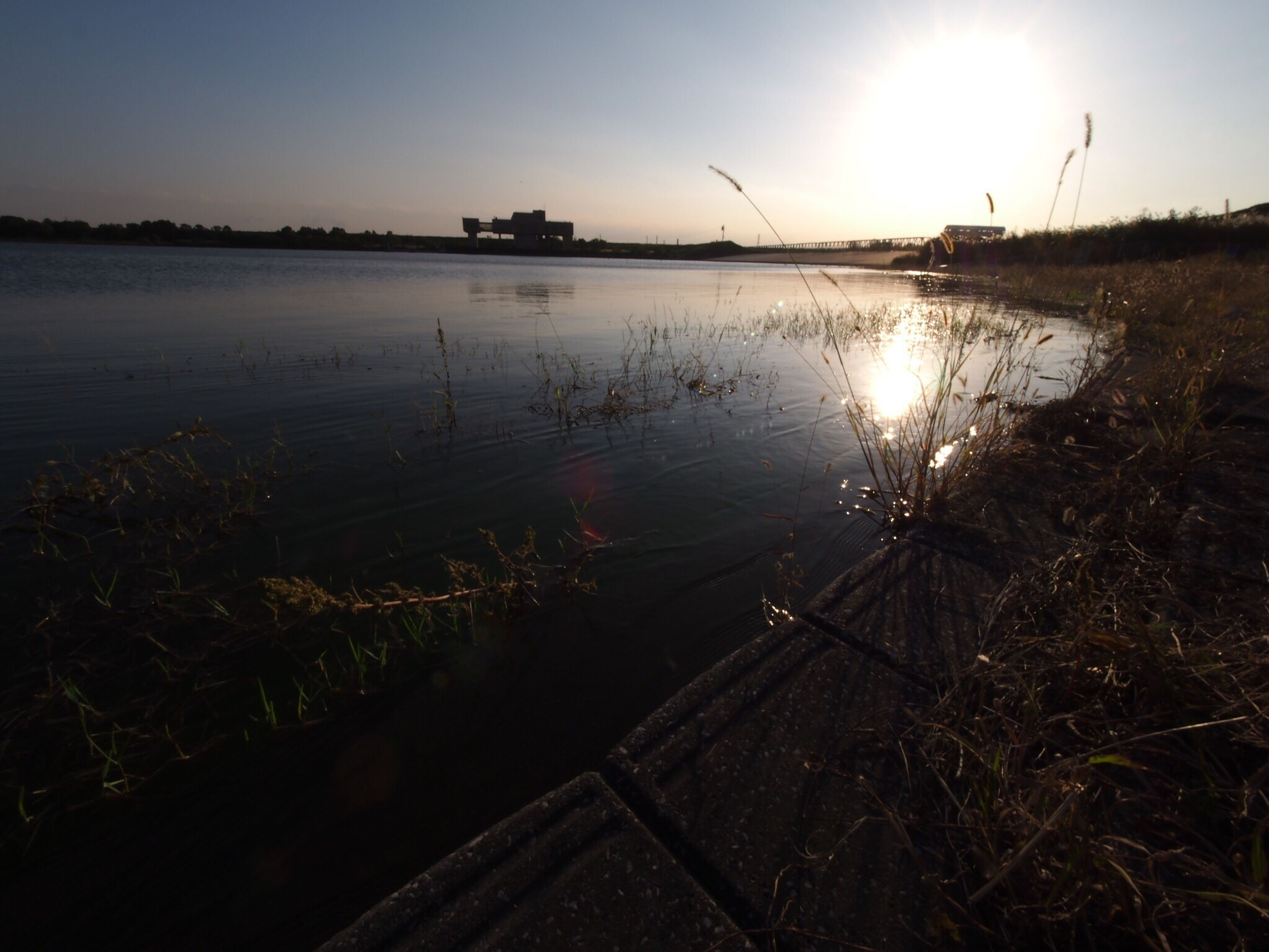 water, tranquil scene, scenics, tranquility, sunlight, sun, grass, plant, sunset, lake, reflection, reed - grass family, beauty in nature, nature, sunbeam, growth, idyllic, sky, non-urban scene, majestic, outdoors, calm, summer, day, lens flare, distant, remote, water surface