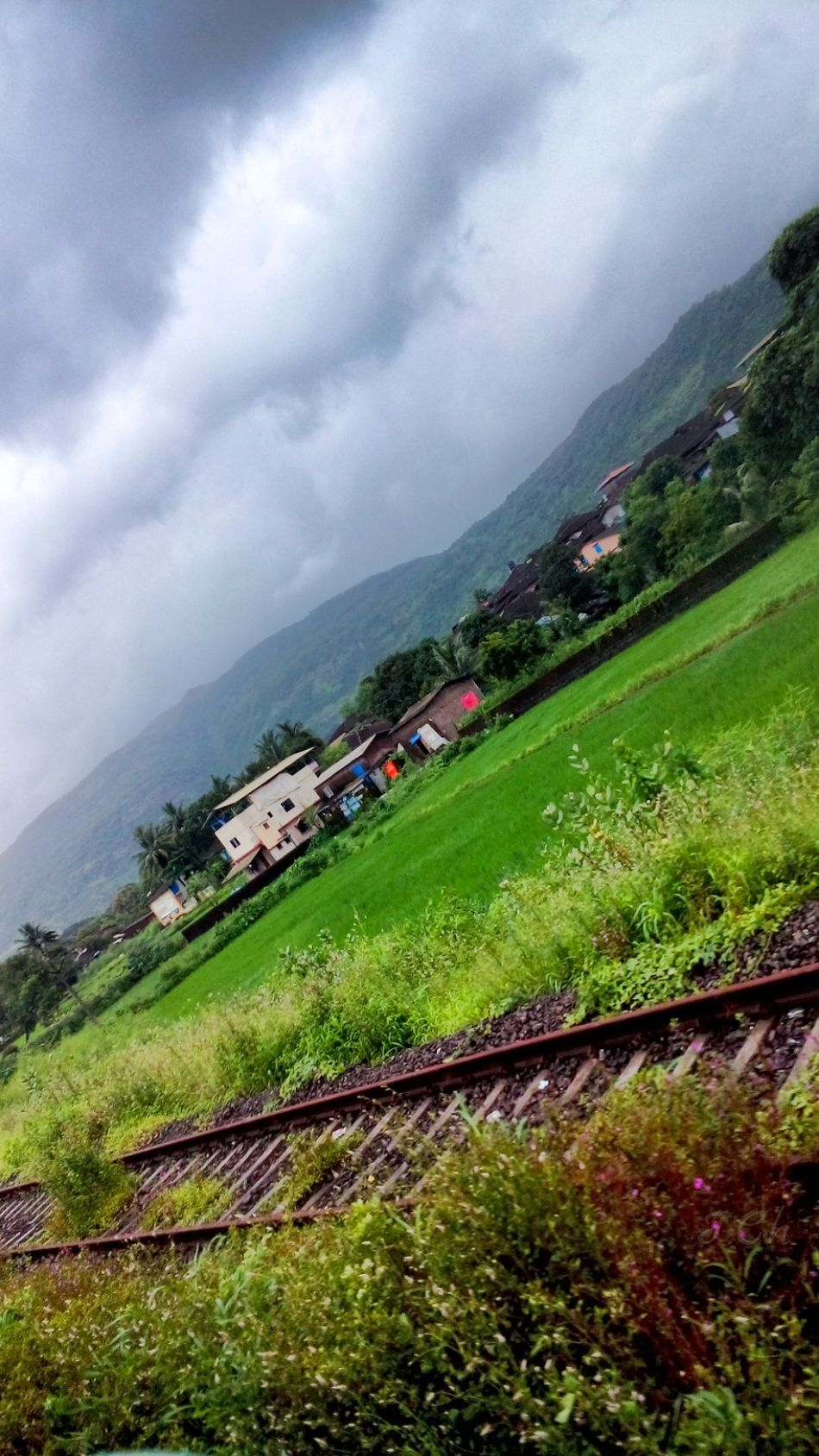 A pic from My Album While Traveling Green Green Green!  Green Green And More Green Green Grass Mountains Covered In Green Greeneryeverywhere Photo Took From The Train Window Travelling Blue Sky, Green Fields Blue Sky And Dark Clouds Houses Peace And Quiet Eye Em Nature Lover Railway Track Railway Track Green Green Green! Naturelovers Pleasent View Low Quality Photo looking this view from near and Get Relax