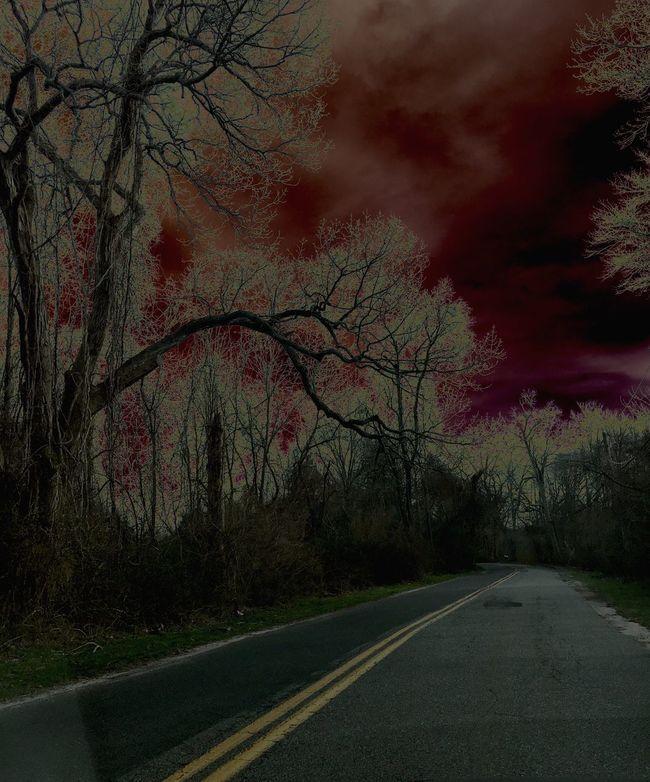 Darkness Darkportrait Roadtonowhere Endoftheworld Creepy Creepytrees Nature Horror