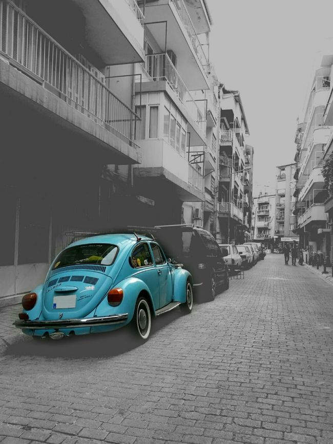 En sevdiğim 😍 Woswosaşk Blue Vosvos Wosvogen Vosvosböceğim Vosvos Loveeeeee ♥♥