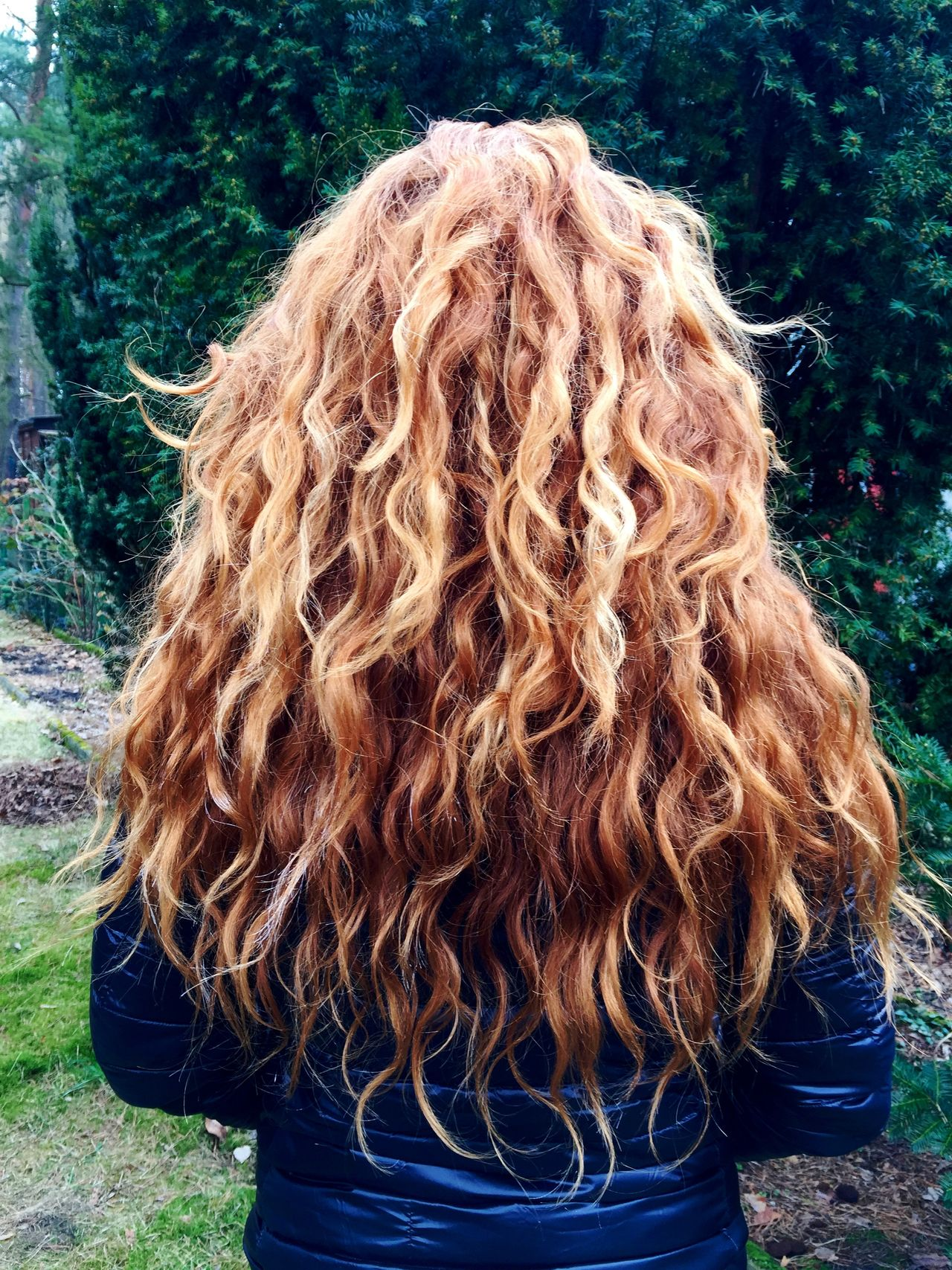 Aveda Close-up Curls Curly Hair Day Ginger Grass Hair Model Long Hair Magical Nature One Person Outdoors Product Real People Rear View Red Red Head Tree Women Young Adult Young Women