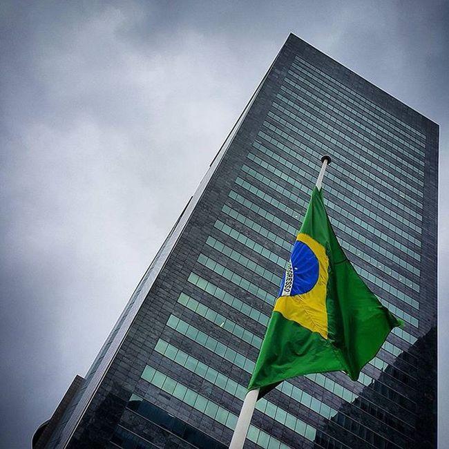 Ordem e progresso 🚫 Será ❔ Cellphonephotography RJ Lookup Flag Bresiu Velhariaskateboard Velharianãopara