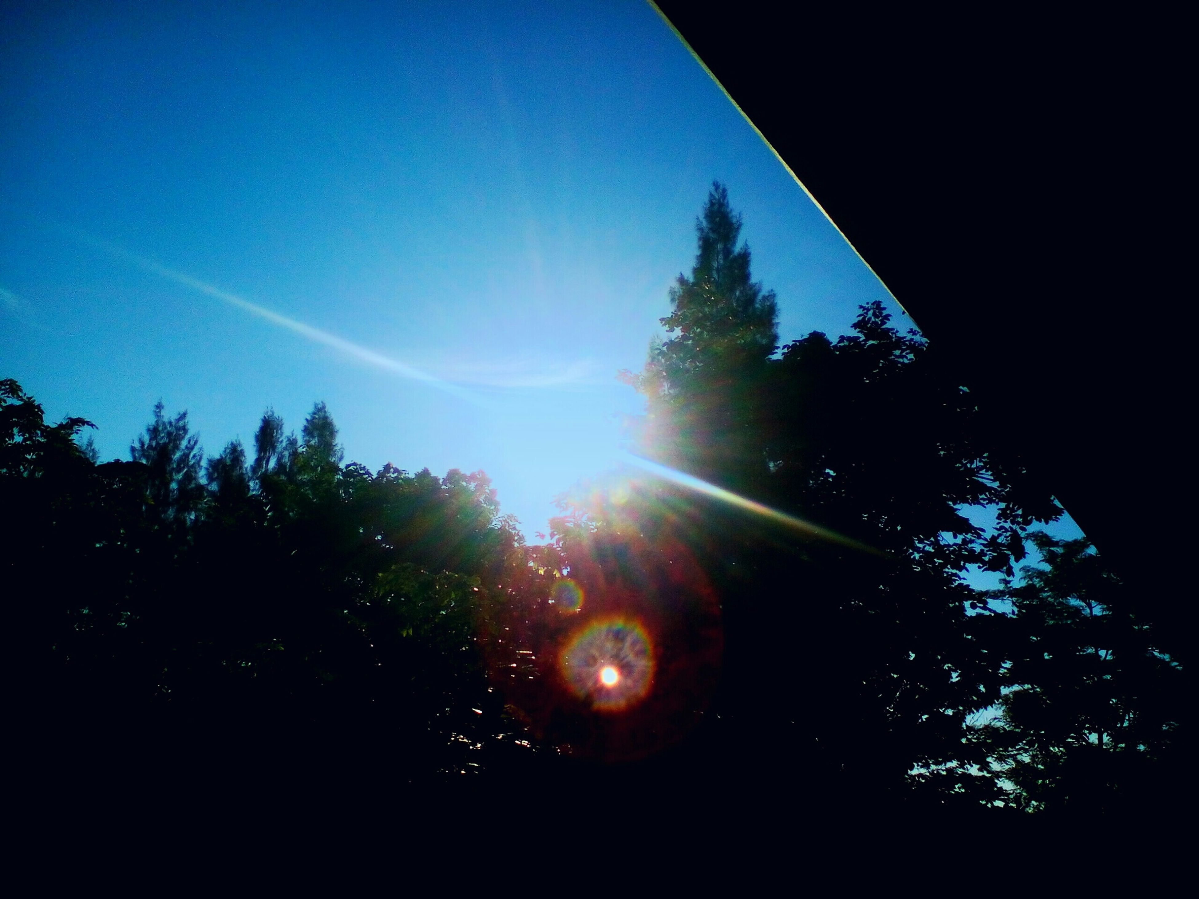 sun, tree, sunbeam, lens flare, sunlight, low angle view, clear sky, silhouette, sky, glowing, bright, blue, nature, tranquility, beauty in nature, shining, scenics, streaming, sunny, shiny