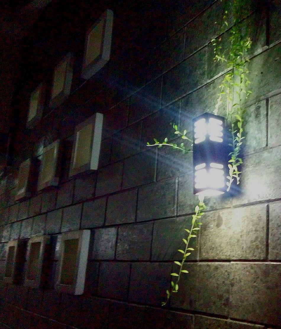Flying Boxes Ventholes Wall Lamp Exposed Bricks Exterior Wall Masjid Al Fattah Jakarta Place Of Worship Religion Spirituality