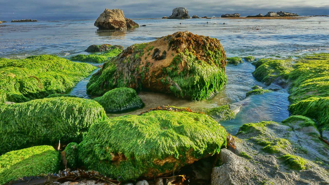 Coast Ocean Rocks Dive HDR Nature Peace Inspire Art Fun