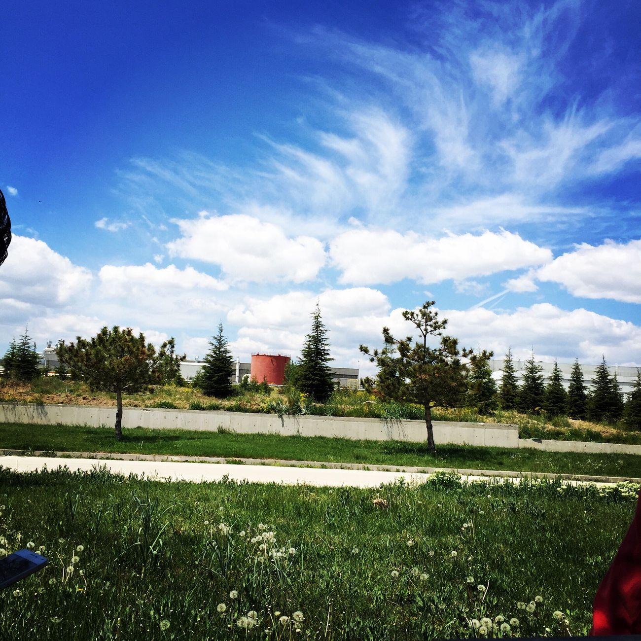 Resim sanatı 🎨 Working Relaxing Mutluluk Exploring On A Tour Hi! Hello World Turkey Ankara Turkey Taking Photos