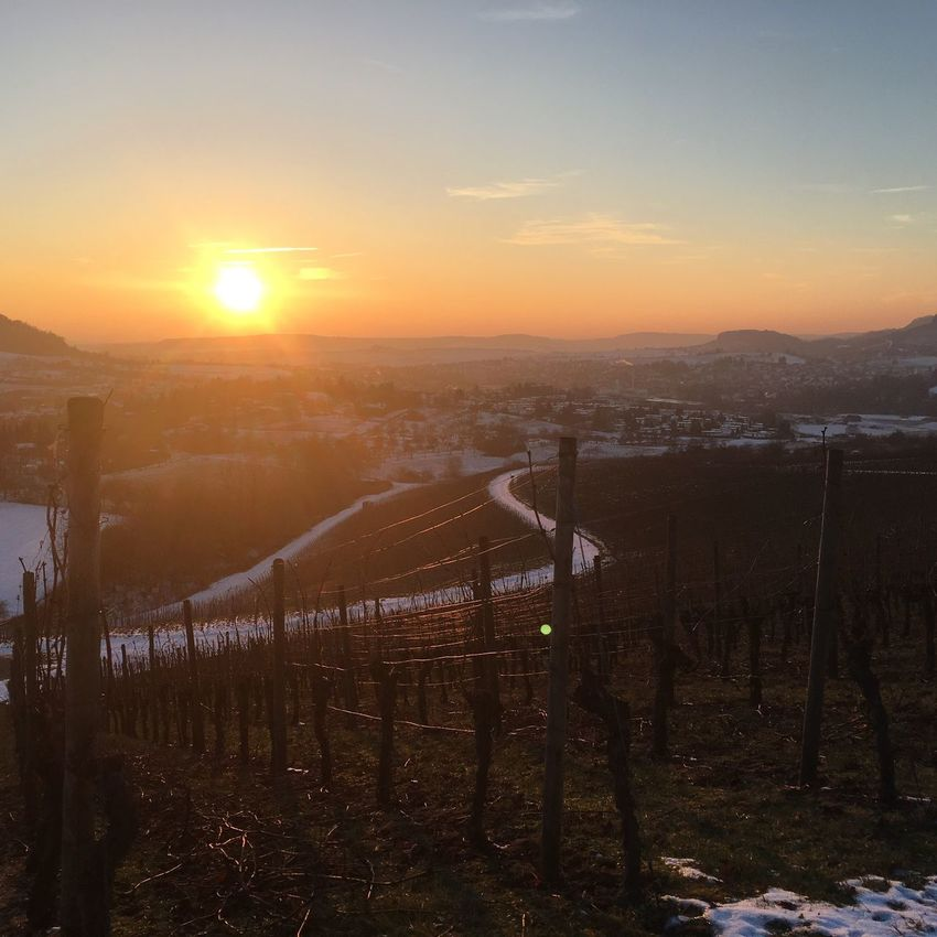 Sunset Nature Wine Beauty In Nature Winter Landscape First Eyeem Photo