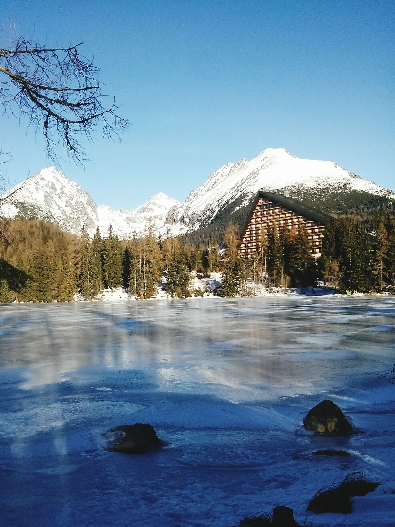 Winter Snow Tree Cold Temperature Nature Sky Beauty In Nature Ice No People Mountain Tatry-Slovakia Strbske Pleso Day Sunday Traveling Positive Energy  Outdoors Beauty Frozen