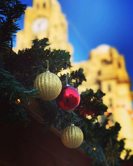 Enjoy The New Normal Christmas Close-up Low Angle View Outdoors Christmas Ornament Christmas Bauble Liverpool