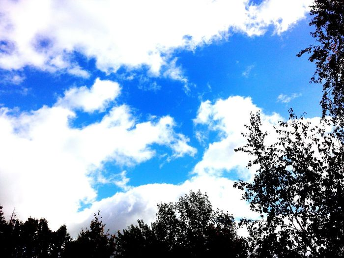 heaven Sky Shine