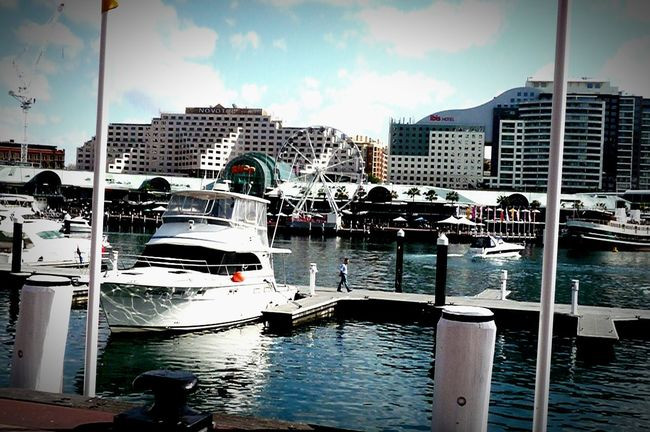 Check This Out Sydney, Australia Bildings Fairywheel Enjoying The View Sea And Sky Seashore Seaside Enyoing Myself