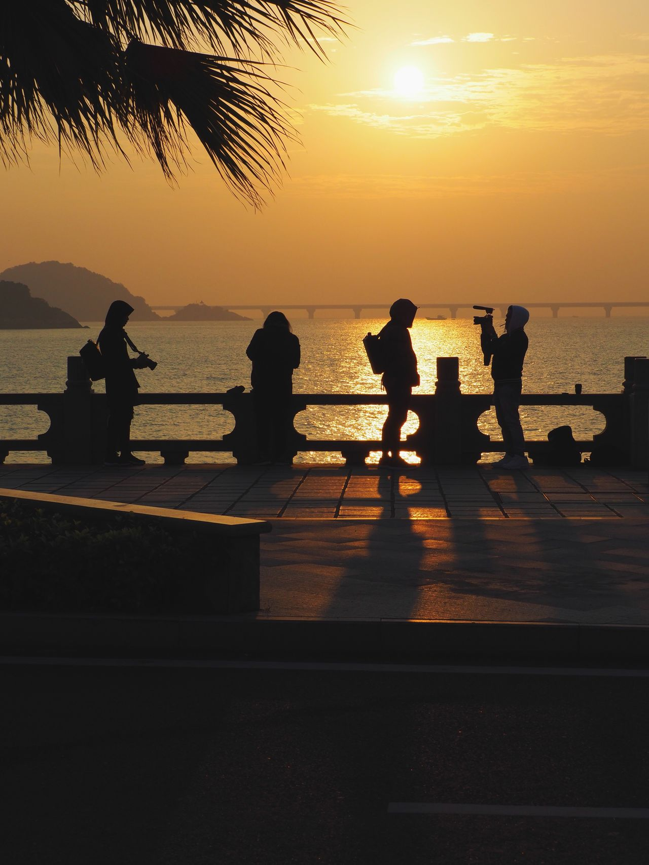 Early Birds Sunrise Zhuhai Sunlight Beauty In Nature Streetphotography Silhouette Lifestyles Real People Reflection Leisure Activity Men Water Sea Shadow Tree Women Sky Vacations Beauty In Nature Outdoors Nature Togetherness People Day