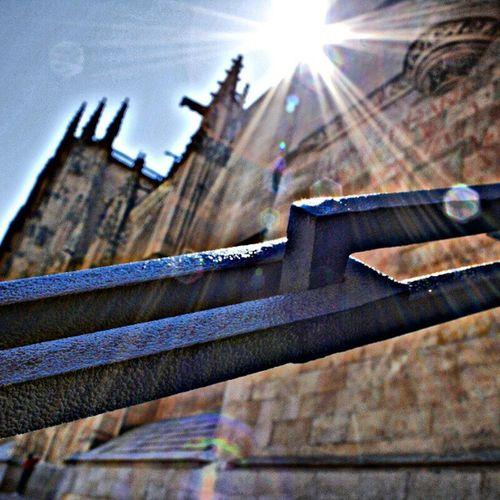 Catedral de Salamanca Loyalgroup Loyal_group1