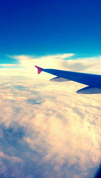 Plane Travel Sky FlyHigh Eyem Best Shots OpenEdit Hello World Turkishairlines Loveisintheair Traveltolove