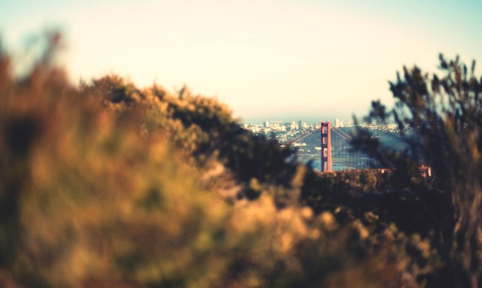 Perks of the peeks. San Francisco Golden Gate Bridge Marin Nikon