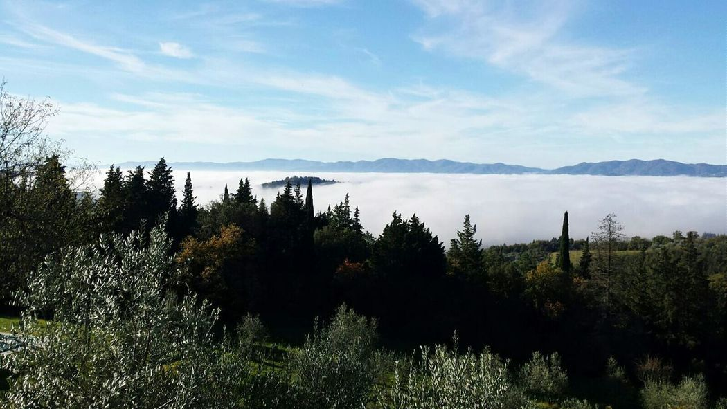 Foggy Day Hills Check This Out Enjoying Life Relaxing Hello World EyeEm Best Shots Tuscany Come To Tuscany!! I LOVE PHOTOGRAPHY