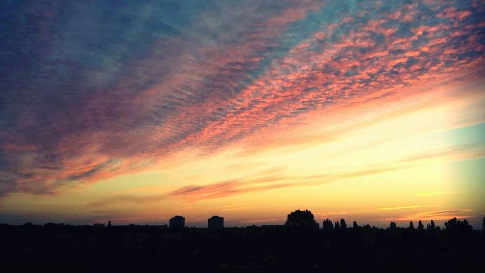 Good Morning Magdeburg 😍💖 No People Outdoors Beauty In Nature Magdeburg Sachsen-Anhalt Saxony Anhalt Sunrise_sunsets_aroundworld 🌞sunrise