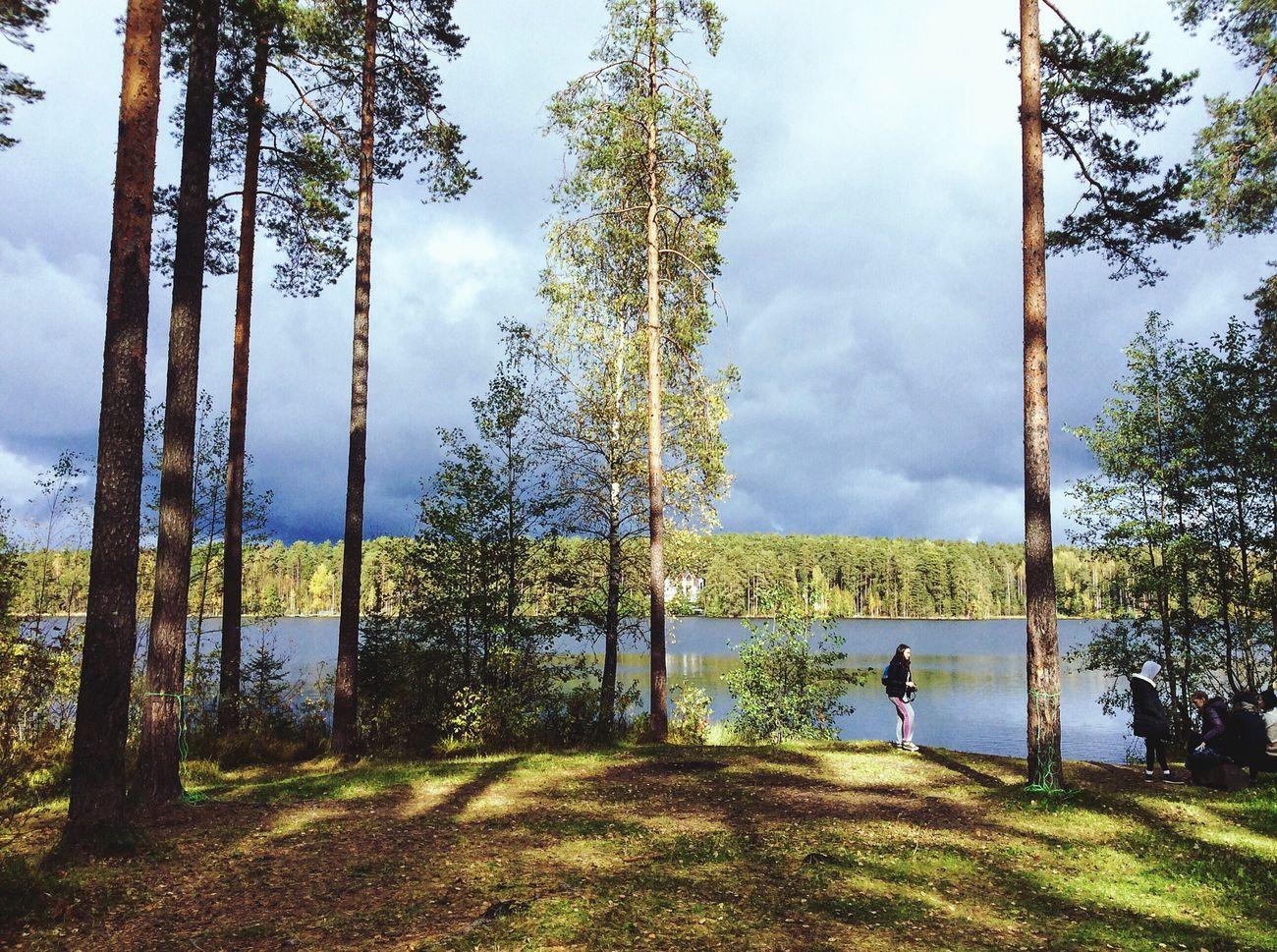 Tree Lake Sky Water Nature Tourism