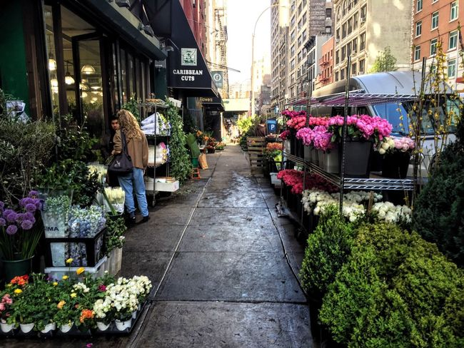 The street I work on is pretty lovely right now. Springtime EyeEm NYC Flowers Flowerporn Flowers,Plants & Garden Flower Collection Streetphotography