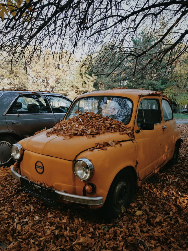 Car Day Eyemphotography Leafs 🍃 EyeEmNewHere Vintagelover Oldcarphoto Outdoors Autumn🍁🍁🍁 Leafs Photography Autumn Colours
