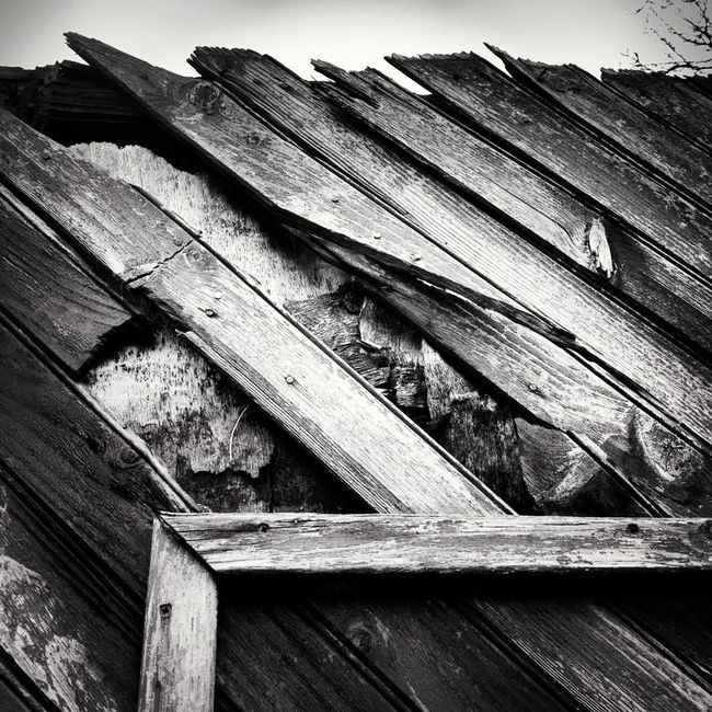 Photographic Memory Wood Blackandwhite BW Collection