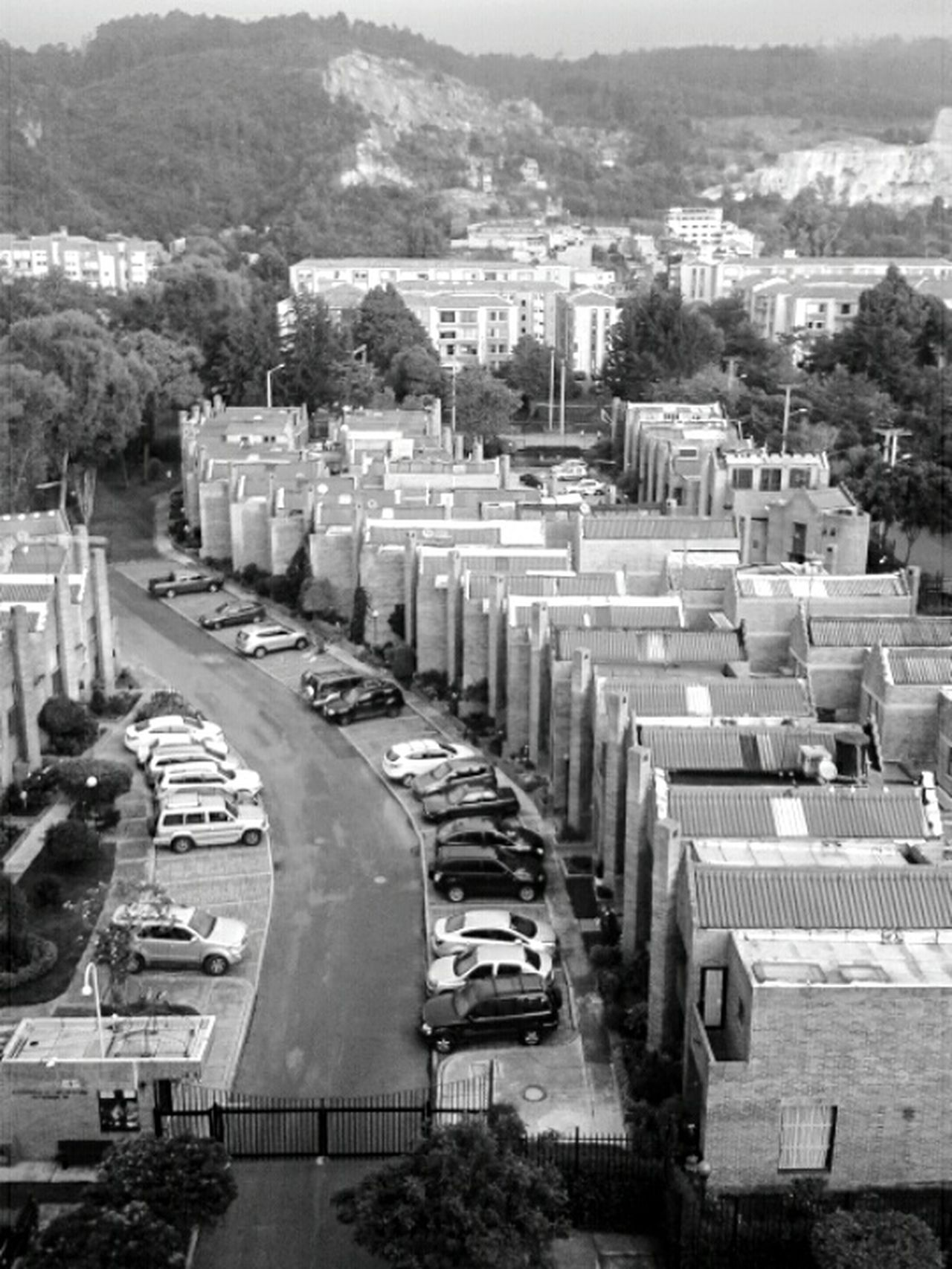 Quintas B | High Angle View City Built Structure Tree Outdoors Day Architecture Cityscape Neighborhood Blackandwhite Streetphoto_bw Monochrome Blackandwhite Photography Mobilephotography City Residential Building Building Exterior Bogota,colombia. Neighbourhood Urban Landscape Architecture