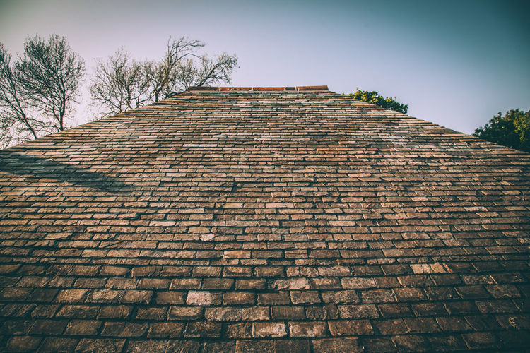 Roof Rooftop Roof Tile Roof Top Slateroof Slate The Architect - 2016 EyeEm Awards