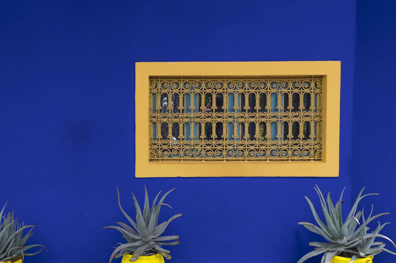 Jardín Majorelle Yves Saint Laurent Architecture Blue Building Exterior Day Jardin Majorelle Low Angle View Yellow