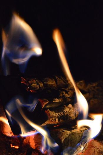 Wood fire burning Camp Fire Camping Evening Light Home Natural Beauty Wood Bonfire Burning Burning Wood Close-up Comfy  Fire Fire - Natural Phenomenon Fireplace Flame Glowing Heat - Temperature Heather Illuminated Interior Long Exposure Motion Night Winter Time