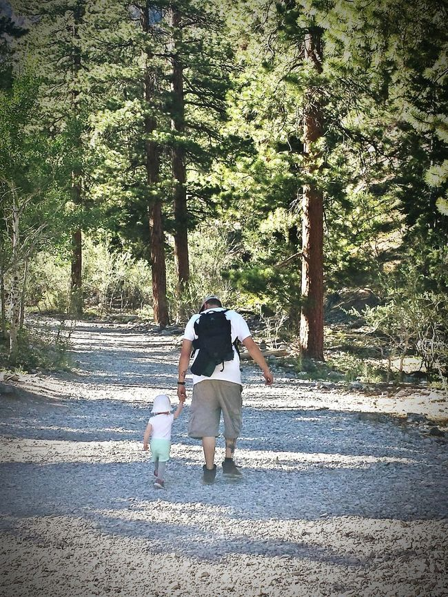 Rear View Walking Real People Outdoors Growth Lifestyles Tree Nature Beauty In Nature Mountains Mountain Eyembestshots Nature Mt Charleston Mountains Chillin Leisure Activity Daddy Daughter Time DaddysAngel Daddy's Girl Dad Hiking Hiking Adventures Hikingphotography Popular Miles Away