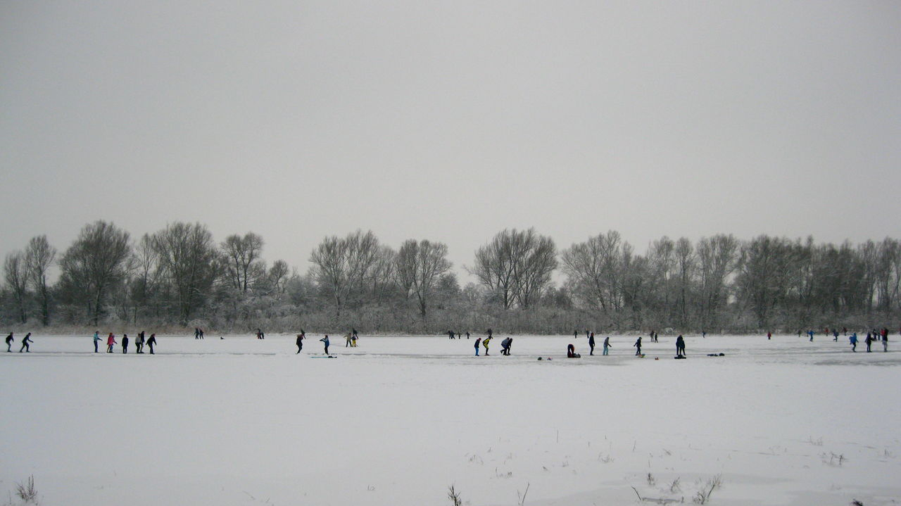 winter, snow, large group of people, cold temperature, nature, tree, clear sky, winter sport, fun, outdoors, sport, sky, day, landscape, beauty in nature, people