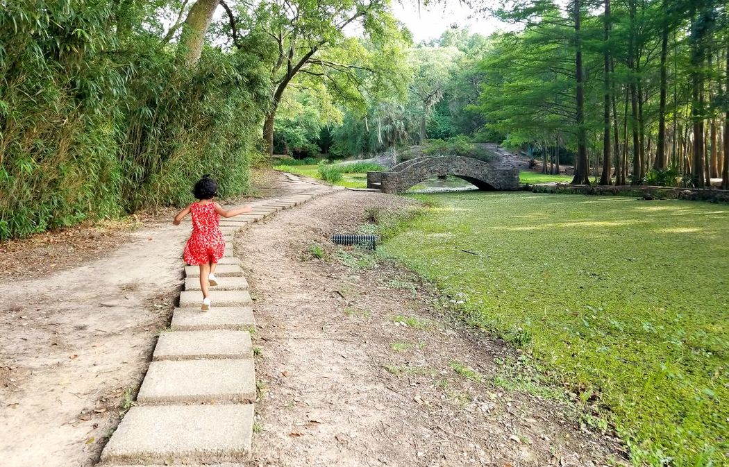 A Run Through The Woods Jungle Gardens Little Girl In Red Running In The Park The Great Outdoors - 2017 EyeEm Awards The Week On EyeEm Been There. Done That. Connected By Travel Connected By Travel Lost In The Landscape