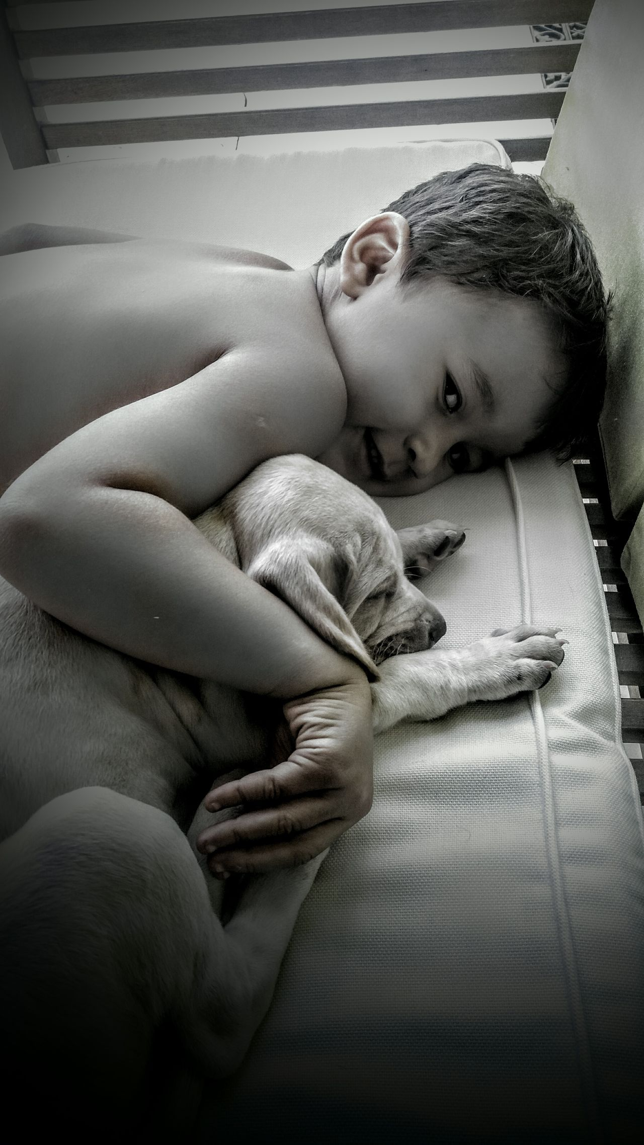 Felicidade Emotional Photography Simple Moment Animal Photography Children Photography Family❤ Popular Photos Children Grandmother Simple Photography Black & White Dog Love Cães Filhote❤❤ Simply Beautiful Inconditional Love