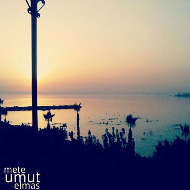 Sundown Relaxing Photography Professional Sea And Sky Amazing Beach Beauty Palm Trees Followforquality
