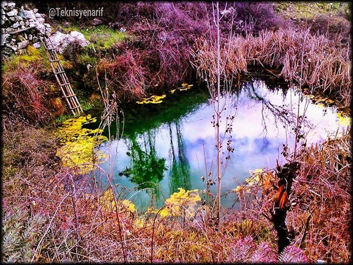 Yayladaki evimin yanında bir gölet alabalık salmayı düşünüyorum 🐟🐟😊👍📷 ⭐Arma mahallesi kaş⭐ I think a trout pond near my home feed.🐟🐟😊👍📷 ⭐Arma plateu kaş/antalya⭐ 01✏Armayaylasıkaş 02✏Plateu 03✏Golet 04✏Alabalık 05✏Lake