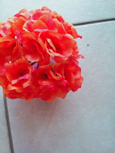 Fake flowers by: Victoria Sarabia